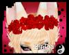 z Kibou F/M Flower Crown