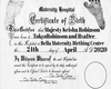 Custom HH Birth Cert