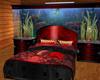 [E] bed acuario red