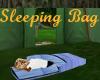 Sleepng Bag