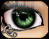 [L] Green i-Fever