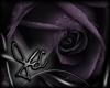 Death Rose Sticker