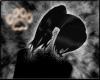 Soft Black Presilla