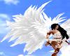Angel Wings anim.