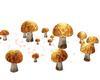 Mushroom Magical