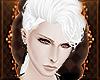 Y' Albino Crow Short