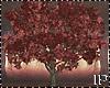 Autumn Field Tree