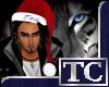 ~TC~ Tex's Santa Hat