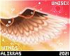 🌸; Autumn Wings