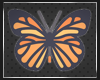 Butterfly_Nature