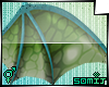 [Somi] Shen Wings v2