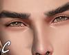 ℂ. Foljin Eyebrows