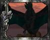 *C*Western Dragon Teal