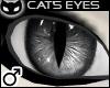  SIN  Cat's Eye - Grey