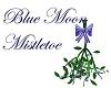 Blue Moon Mistletoe