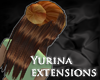 Layerable Extensions