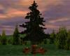 Watermill Tree Bar