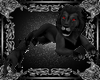 black Lion & Baby Lion