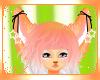 *kx* Starburst Ears