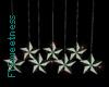 FLS Hanging Stars II