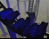 blue wild coaster