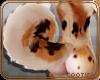 💎 Abby | Tail 1