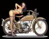 Harley Pinup