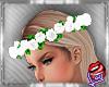 [LD]Aretha FlowerscW