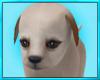Cute Cuddle Puppy