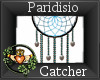 ~QI~ Paridisio Catcher