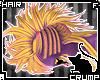 [C] Starburst V.2 Hair