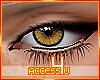 ! Honey Eyes