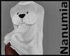 polar dress sweater