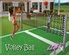 [LO] Volley Ball Fun