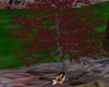 tree with sitting pose