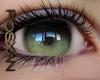 *R*Forest  Eyes M