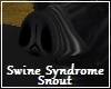 Swine Syndrome Pig Snout