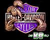 ~KB~ Harley Claw (Purple