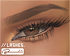 // Lashes. Bottom