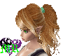 Nessa's ponytail