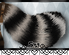 {S} Coon Tail [M/F]