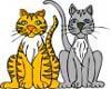 kitty cats stiker