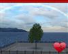 Mm Rainy Rainbow
