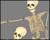 +Skeletons+