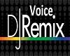 Voice DJ Remix