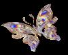 ~SB Butterfly 2