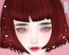 n| Oisticu Velvet