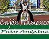 [M] Patio Andaluz Cajon