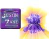 jz_purple iris