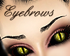 Real Black Eyebrows